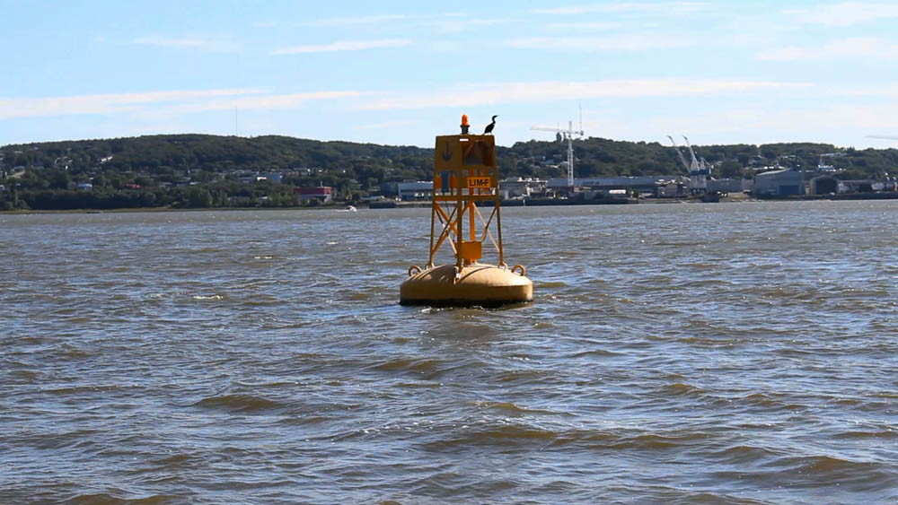 Anchorage buoy