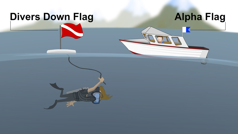 Divers down flag